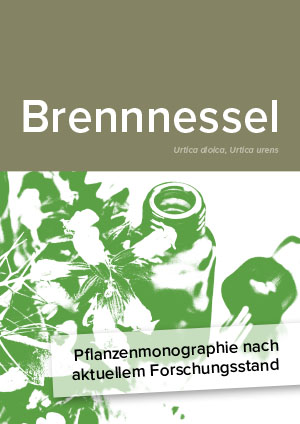 Pflanzenmonographie nach aktuellem Forschungsstand: Brennnessel