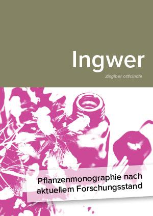 Pflanzenmonographie nach aktuellem Forschungsstand: Ingwer