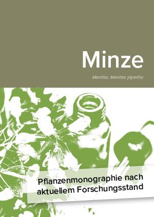 Pflanzenmonographie nach aktuellem Forschungsstand: Minze