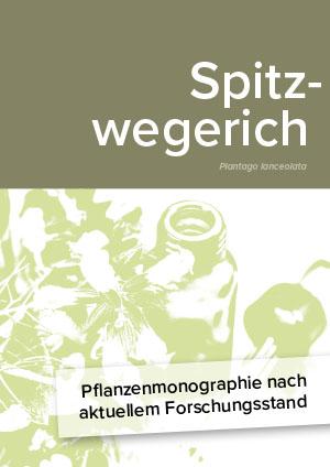 Pflanzenmonographie nach aktuellem Forschungsstand: Spitzwegerich